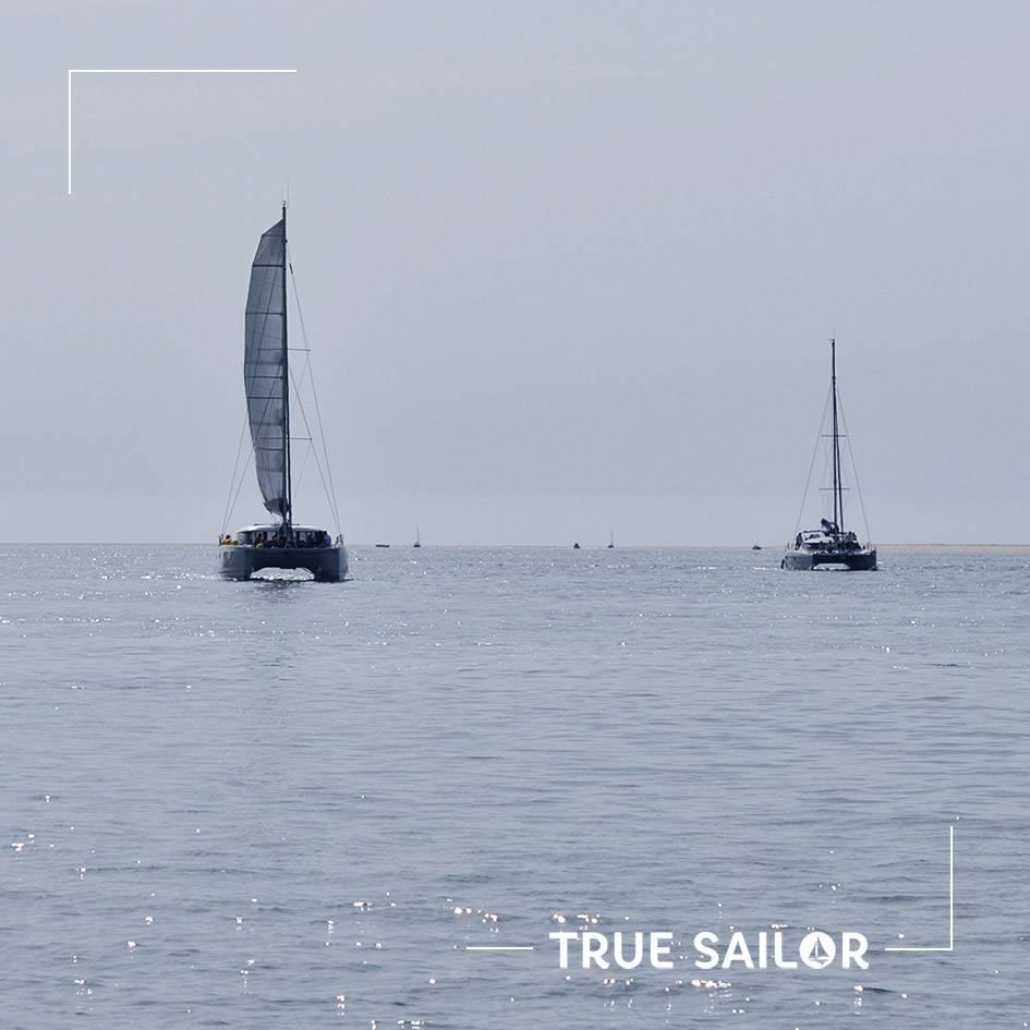 Activité séminaire régate voilier catamaran